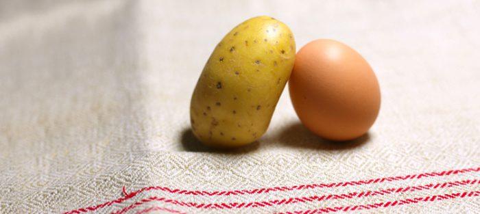Das Ei – Maß aller Dinge?