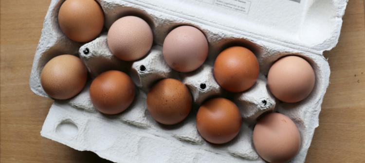 Eierschalen haben faszinierende Farbschattierungen. Daraus lassen sich prima kleine Mosaike erstellen.