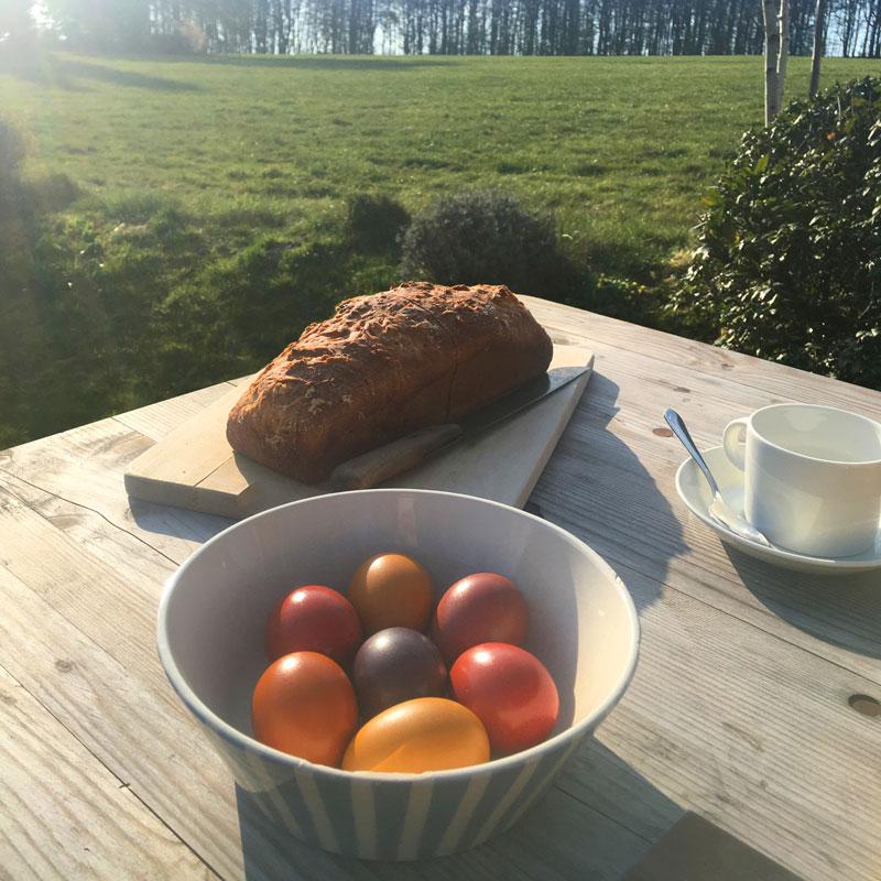 Osterfrühstück mit bunten Bio-Eiern
