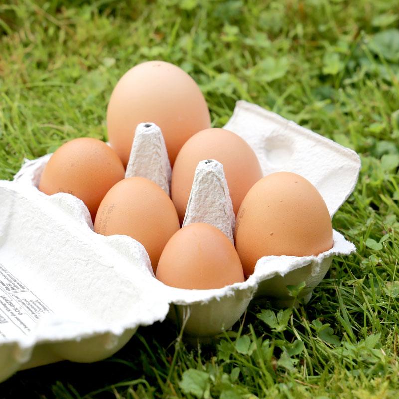 So unterschiedlich können Eier ausfallen